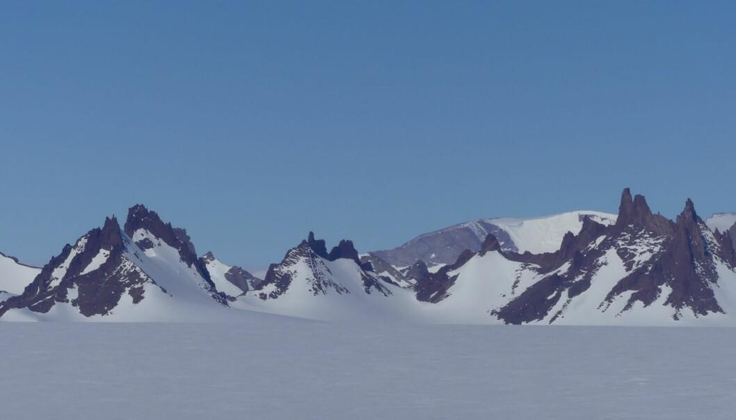 De kalde nunatakene i fjellrekken Skigarden består av bergarten charnokitt dannet ved størkning av varme bergartsmelter (Foto: Ane K. Engvik)