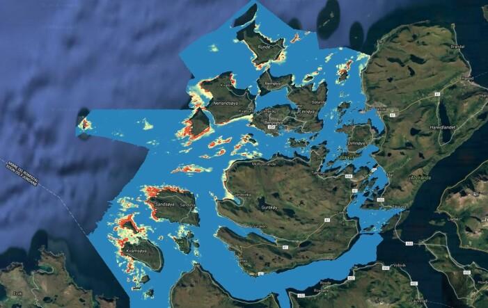 Slik ser modellresultatet ut på kartet. Biomassemodellen for stortare er utviklet gjennom et samarbeid mellom forskningsinstitusjoner (Havforskningsinstituttet, NGU og Kartverket) og industrien (Dupont). Modellen som beskriver bølger og strøm er utviklet av Havforskningsinstituttet og Meteorologisk institutt.