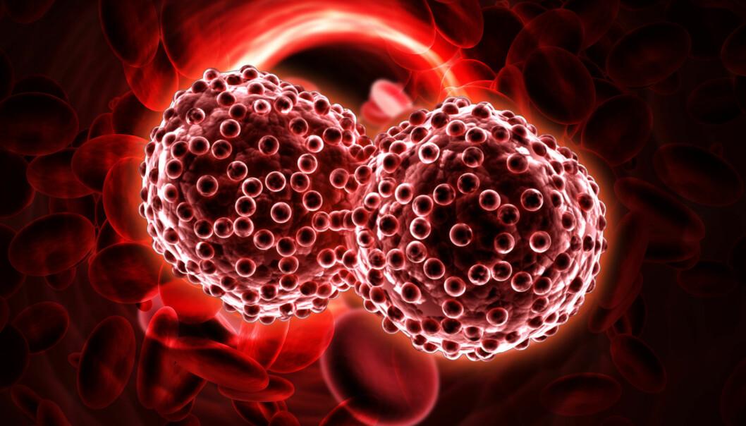 Australske forskere mener de har funnet et fingeravtrykk som er felles for alle typer kreft. En enkel blodprøve kan avsløre den, og du skal få svar på ditt lokale legekontor. Men først må metoden prøves ut grundigere. (Illustrasjon: Shutterstock / NTB Scanpix)