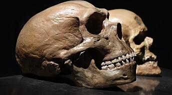Hvordan hadde verden vært, dersom det var neandertalerne som overlevde, og vi som døde ut?