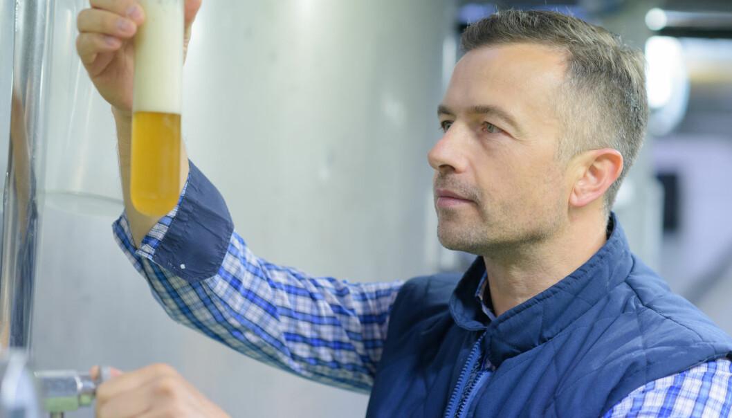 I 2004 var det få glutenfrie produkter på markedet. Men allerede da fant roboten til Kasper Christensen fram til ideen om glutenfritt øl i et nettsamfunn for ølentusiaster. (Illustrasjonsfoto: Shutterstock / Scanpix)
