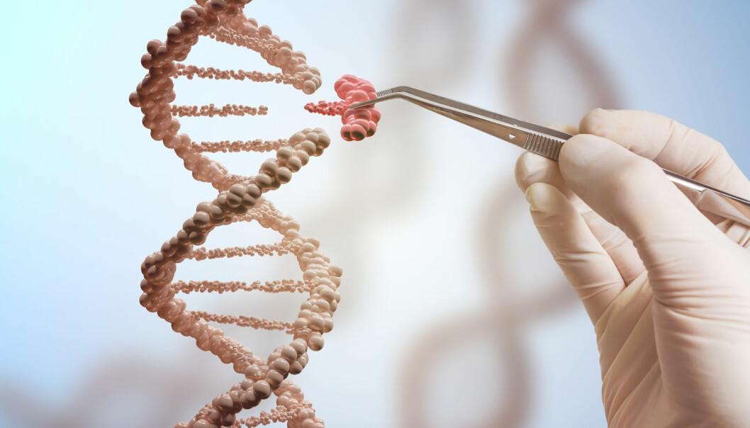 Hvor risikabelt er det å redigere i DNA-et med CRISPR-teknologi? Forskerne er ikke helt enige.  (Foto: vchal / Shutterstock / NTB scanpix)