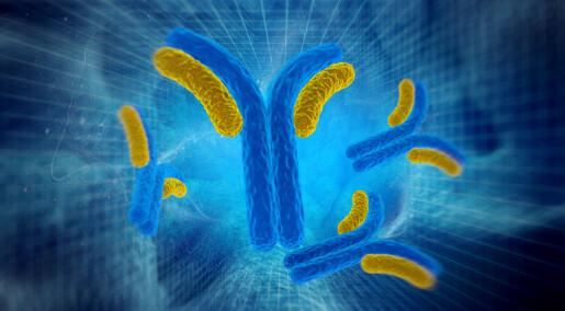 Antistoffer – superhelter både i kreftbehandling og på Nobel-scenen