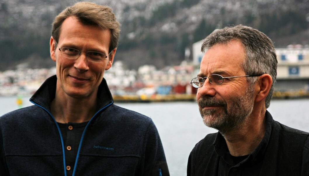 Sammen med kollega Bjørn Tore Lunestad (t.h.) klarte Arne Duinker å finne ut hva som hadde gått galt. (Foto: Anders Jakobsen / Havforskningsinstituttet)