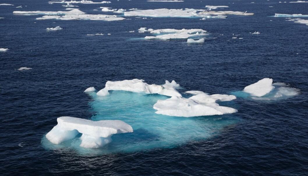 Beslutningstakere plukker de tallene som passer til deres politiske ønsker, mener forsker Erlend Hermansen. Et eksempel er utbredelsen av is i Barentshavet. (Illustrasjon: Achim Baque / Shutterstock / NTB scanpix)