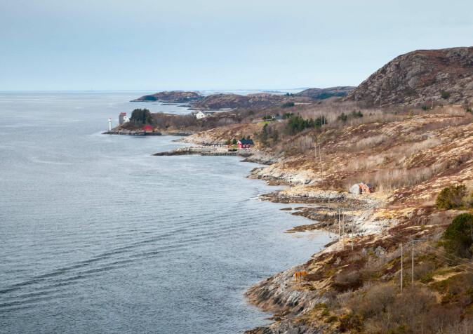 Derfor må vi ta vare på økosystemene langs kysten