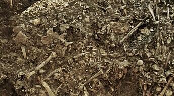 Spor av pest funnet i steinalderkvinne: Forklarer kanskje mystisk mangel på mennesker