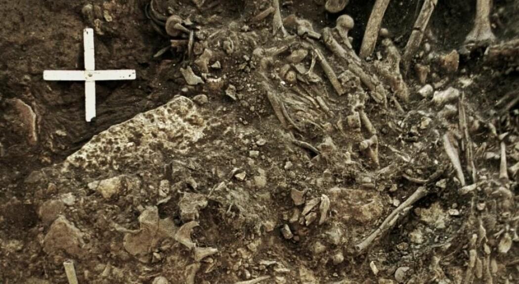 5000 år gamle skjelett viser spor av pest. Kan sykdommen ha skapt en epidemi i steinalderen? (Foto: Cell Press Office)