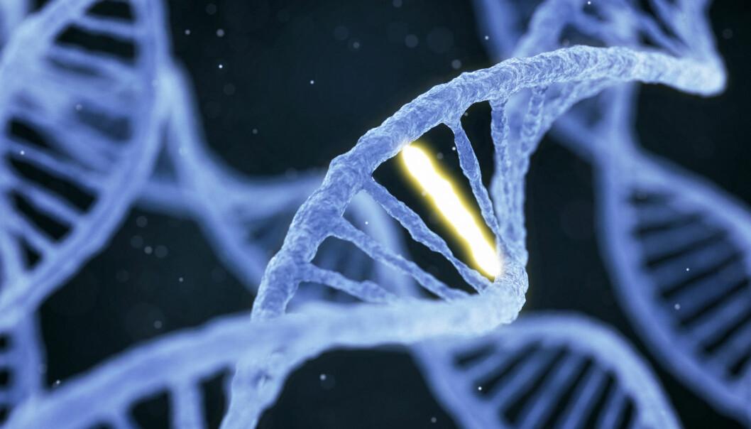 """Forskerne analyserte genene til CRISPR-redigerte mus, på leting etter steder der en av """"bokstavene"""" i DNA-koden var byttet ut med en annen. De fant massevis. (Illustrasjon: Konstantin Faraktinov / Shutterstock / NTB scanpix)"""