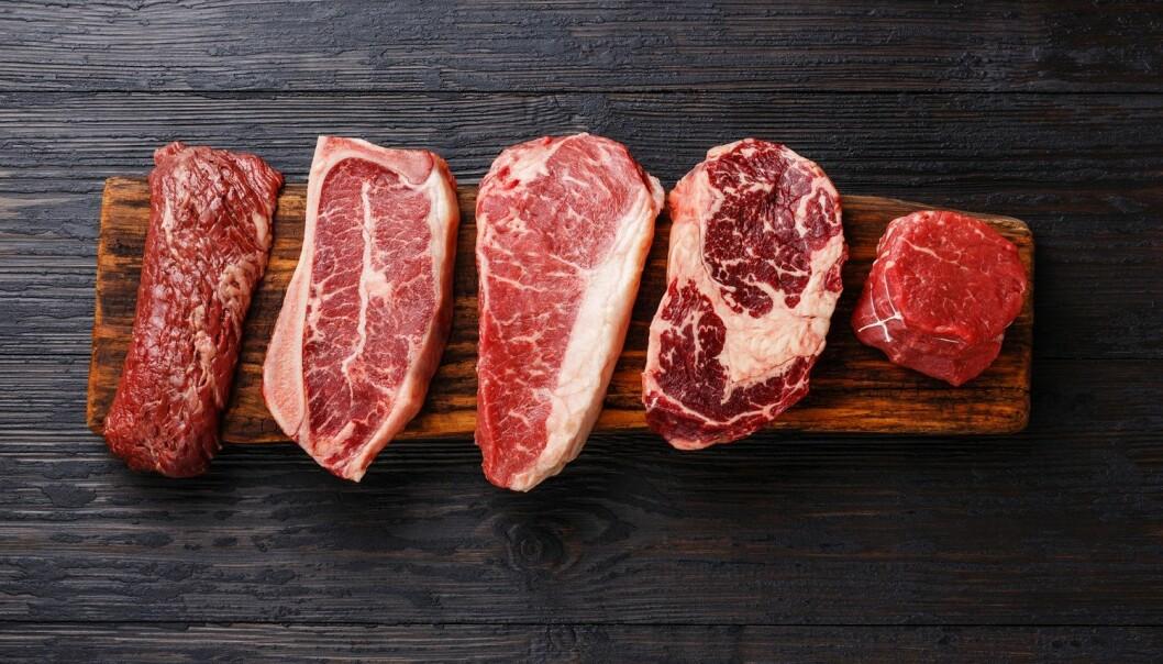 Du vil gjerne leve bærekraftig, og du vet at kjøtt er en av synderne. Men noen ganger er biffen uimotståelig. Hva skal du gjøre? (Foto: Lisovskaya Natalia / Shutterstock / NTB scanpix)