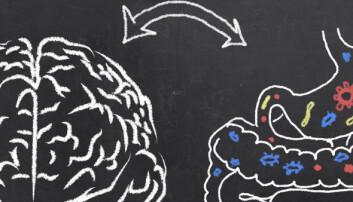 Er «magefølelsen» tarmbakteriene dine som snakker til deg?