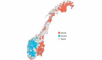 Norskfaget: Den norske språkstoda