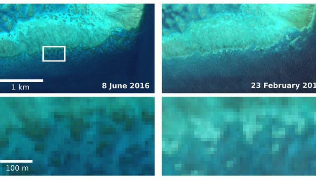 Ser korallrev dø fra rommet