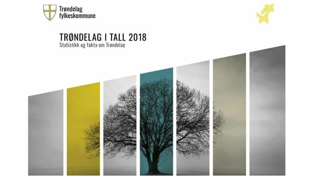 (Skjermbilde av forsiden til rapporten Trøndelag i tall 2018 - statistikk og fakta)