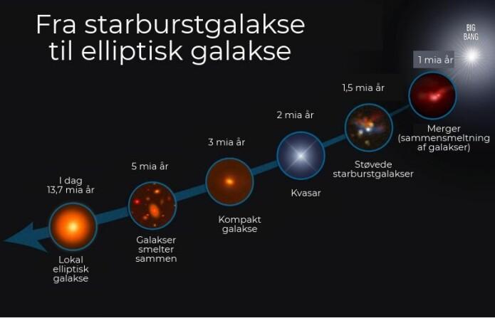 Oversikt over hvordan starburstgalakser har utviklet seg til de lokale elliptiske galaksene som eksisterer i dag. (Illustrasjon: NASA, ESA, S. Toft, Niels Bohr Instituttet, og A. Feild, STSCI)