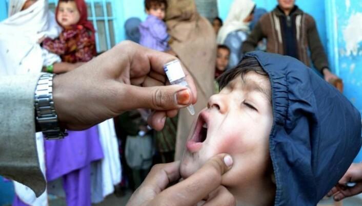 Polio har blitt bekjempet med vaksiner som enten sprøytes inn gjennom huden eller gis i munnen, som her på grensen mellom Pakistan og Afghanistan. (Foto: Shutterstock)