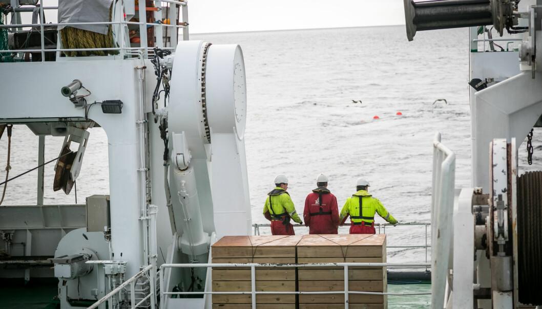 (Foto: Erlend A. Lorentzen / Havforskingsinstituttet)