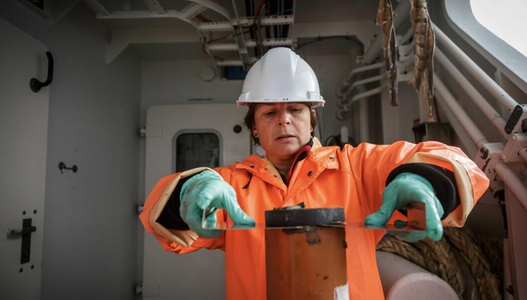 Hilde Elise Heldal skjer ut lag av ein kjerneprøve. Desse skal ho fryse om bord, før ho tørkar, malar og analyserer dei på land. (Foto: Erlend A. Lorentzen / Havforskingsinstituttet)