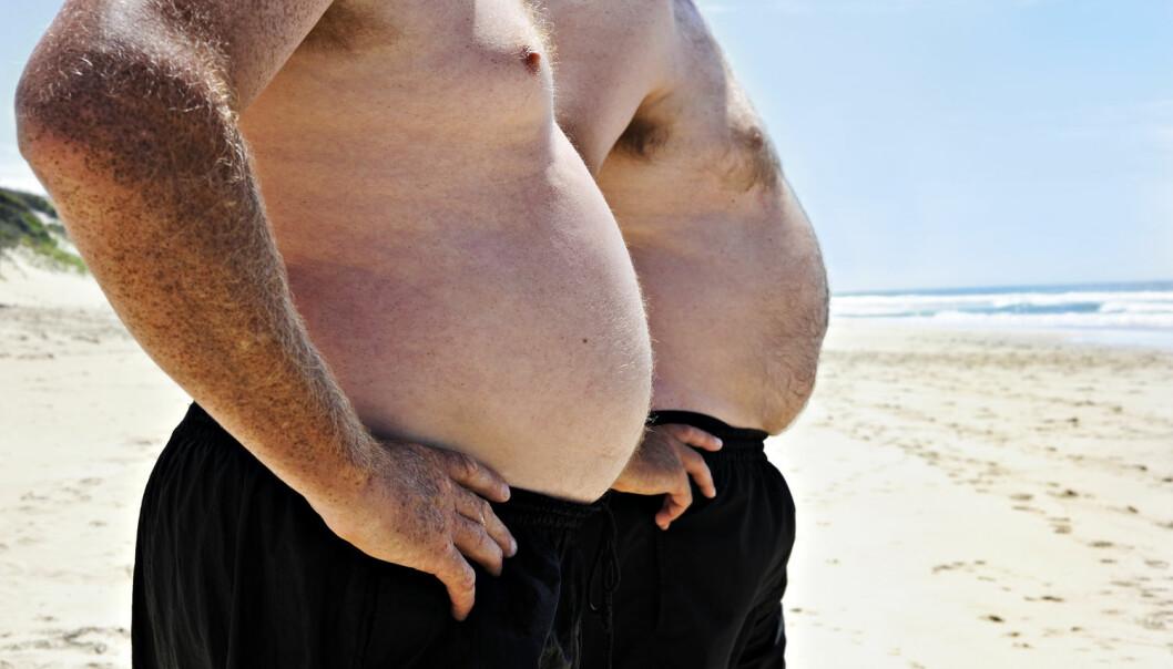 Overvekt aktiverer tre gener som disponerer for fettlever, viser ny forskning. Overvekt øker risikoen for fettlever markant. (Foto: Tish1 / Shutterstock / NTB scanpix)