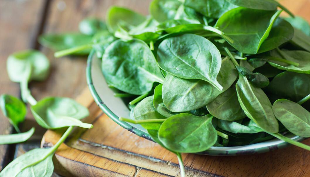 Pasienter med hjertetrøbbel har ofte langvarige betennelser i kroppen. Forskning fra Sverige viser at grønnsaker som spinat kan dempe betennelsen. (Foto: Shutterstock)