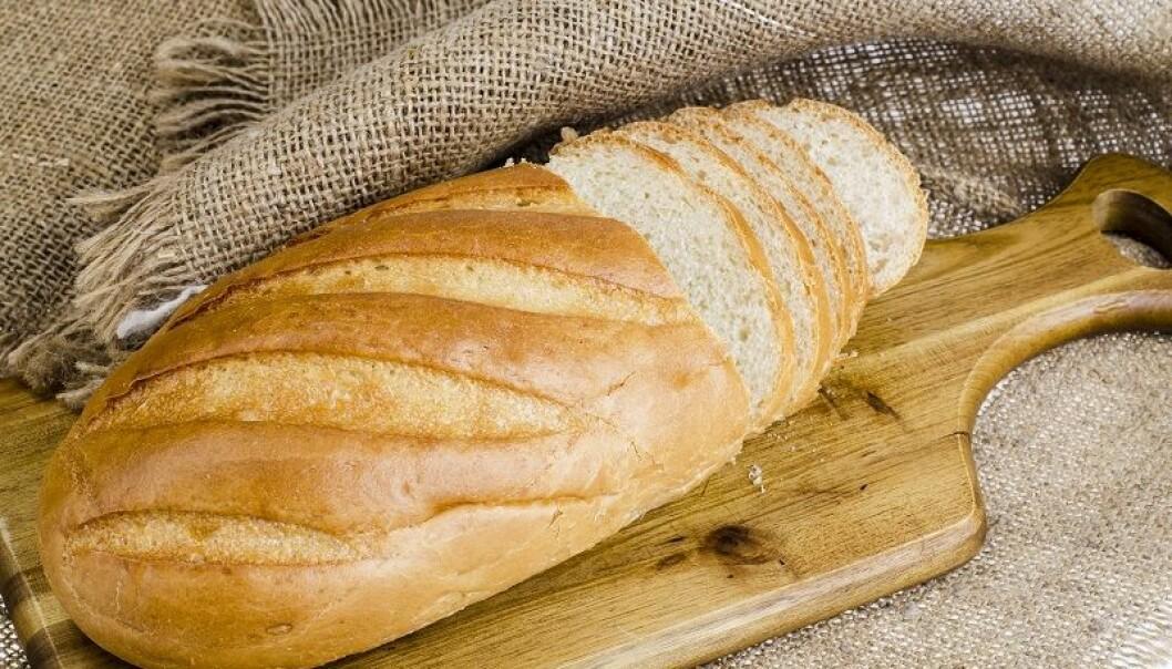 Vi vet ikke hvor mange som har glutenallergi eller hvordan cøliaki oppstår. Men en ny studie kan hjelpe oss. (Foto: Colorbox)