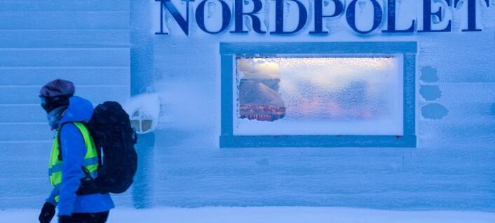 Om Svalbards litterære speilbilde