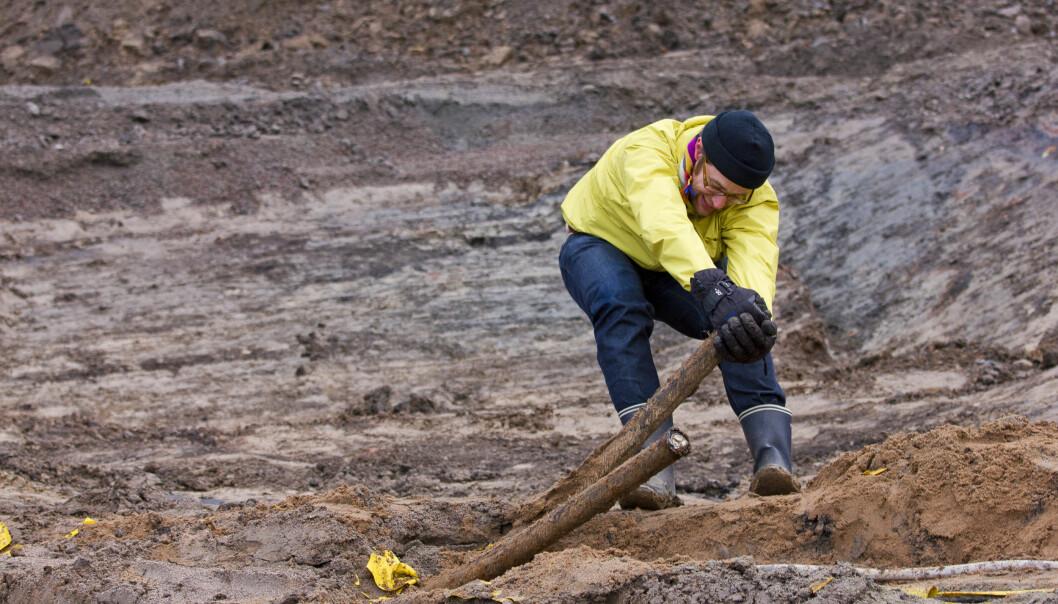 Her drar Björn Wallsten opp gammel kobberledning. Han har forsket på hvor mye ubrukt kobber som ligger skjult under byen Norrköping. (Foto: Peter Modin)