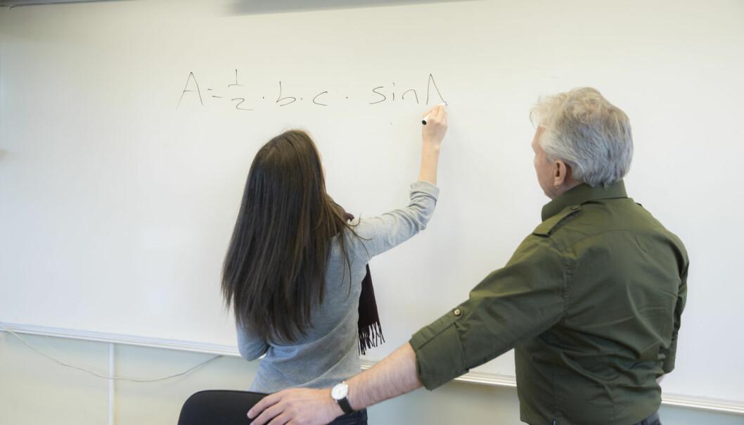 - Som tidligere lærer i videregående skole har jeg mange ganger hørt fraser som: «Ho mamma var ikke flink i matematikk, så det er ikke rart at jeg heller ikke er det», skriver Stein Arnold Berggren. (Foto: Berit Roald / NTB scanpix)