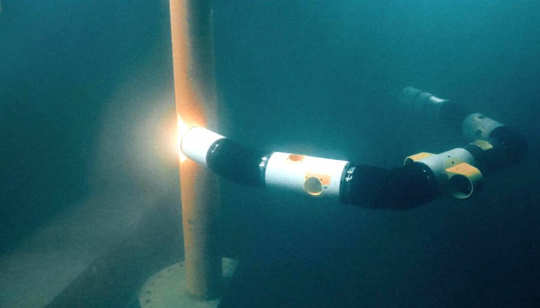 Slangeroboter kan snart drive vedlikehold av installasjoner under vann. (Foto: Eelume)