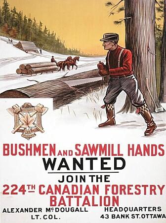 Rekrutteringsplakat fra Canada. (Bilde: Haneca et al./Antiquity 2018)