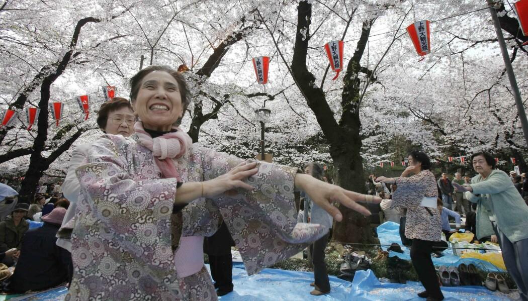 Kvinner danser i en park i Tokyo under feiringen av kirsebærblomstringen i 2012. Dans kan være bra i alderdommen, tror forskere. (Foto: Koji Sasahara/AP/NTB scanpix)