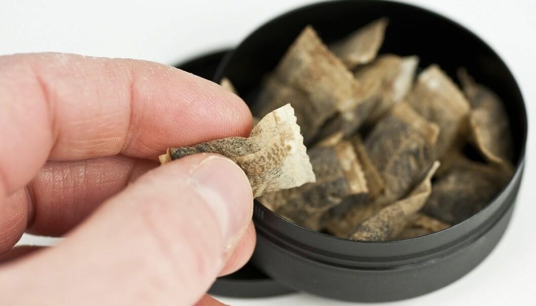 Helsedirektoratet har ikke planer om å endre sine advarsler om at snus kan føre til bukspyttkjertelkreft, til tross for at en stor samlestudie ikke viser sammenheng med krefttypen. (Foto: vichni, Shutterstock, NTB scanpix)