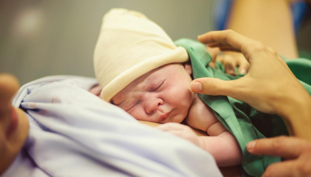 Ttidligere studier viser at det var helt trygt å legge barn som er født mellom uke 32 og 34 rett opp til mor etter fødsel. Men hva med dem som er født allerede i uke 28? (Foto: Shutterstock / NTB scanpix)