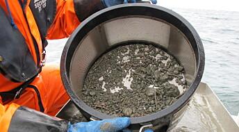 Betre kår for dyra på havbotnen i Skagerrak