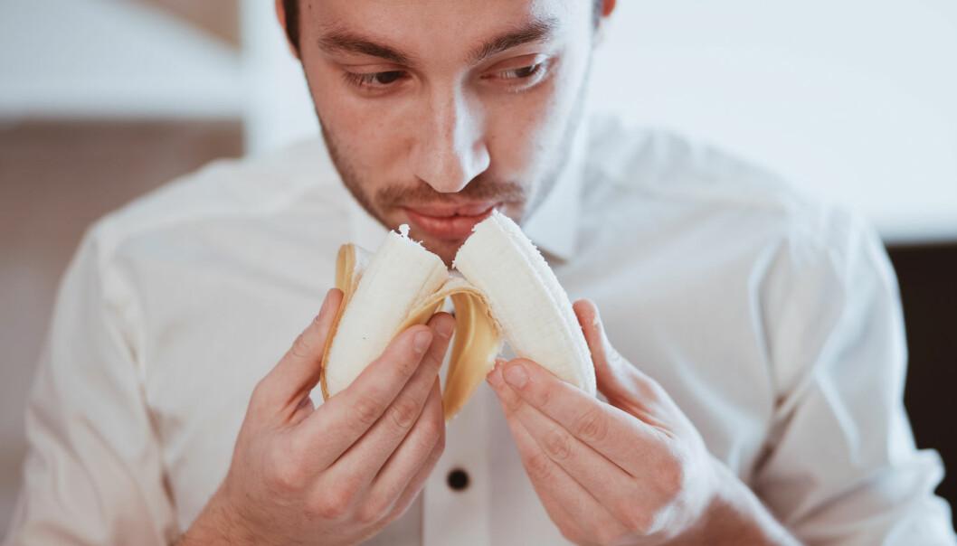 Mennesker og hunder er blant annet omtrent like sensitive for lukten av banan. (Illustrasjonsbilde: Shutterstock/NTB Scanpix)