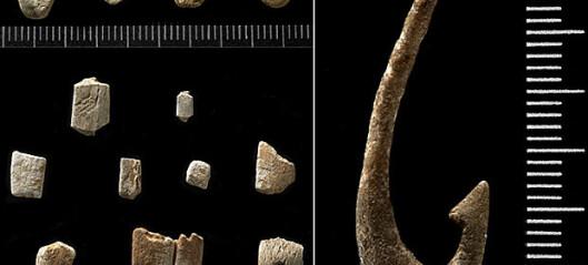 9000 år gamle fiskekroker
