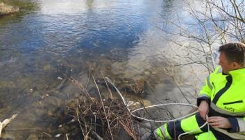 Forskere fra Norges Geotekniske Institutt skal nå forsøke å kartlegge hvor miljøgiftene i Tyrifjorden kommer fra. (Foto: NGI)