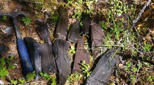 Vikinger slipte sverdene sine med trøndersk stein
