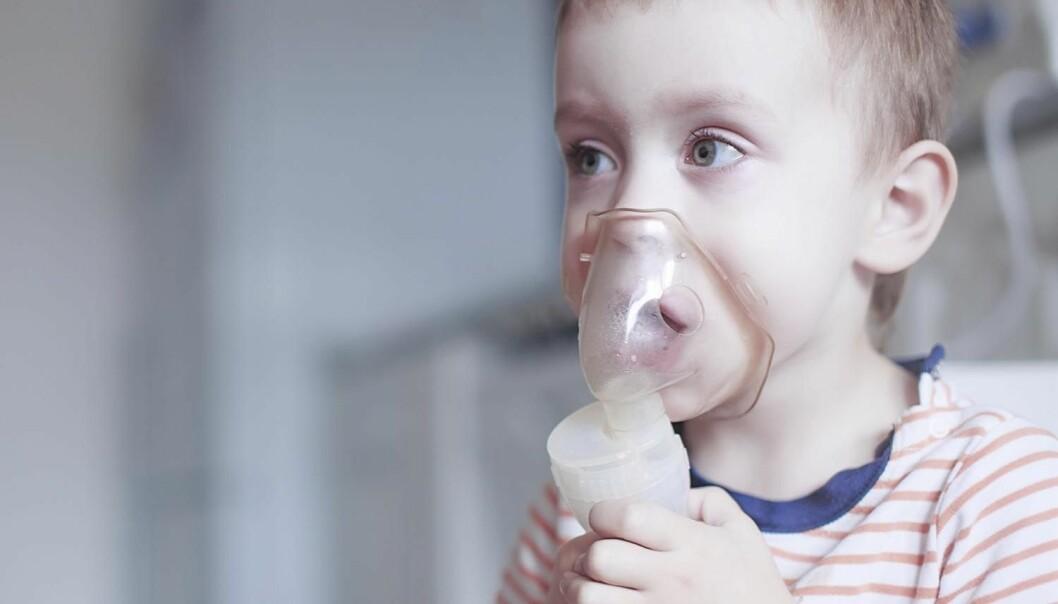 Hva gir astma? Forskningen er ikke enig om hvilken rolle D-vitamin spiller.  (Illustrasjonsfoto: EvgeniiAnd / Shutterstock / NTB scanpix)