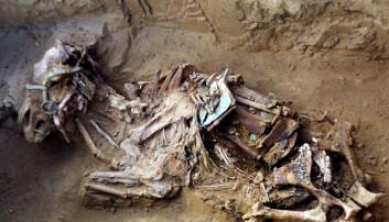 Nomadene ofret hestene sine og gravla dem pyntet med seletøy og sal. Noen av dem er svært godt bevart under permafrosten, som denne fra Yakutia øst i Russland. Den er ikke en av hestene i den nye studien. (Foto: Eric Crubézy)