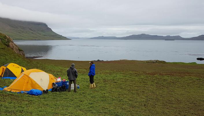 Jula ble tilbrakt i telt ved sjøørretvassdraget Aceana en tre timers båttur unna forskningsstasjonen Port Frances. (Foto: Sindre Eldøy, CC BY-SA 4.0)