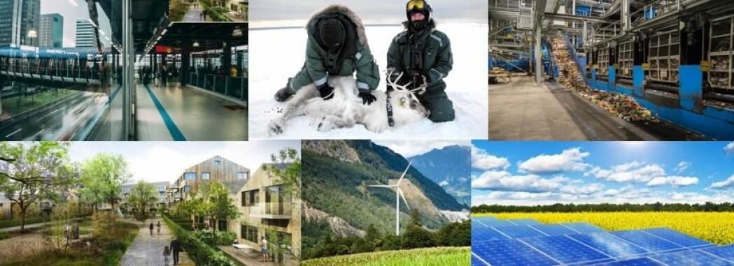 Bærekraftbloggen – miljømessig bærekraft fra NTNU
