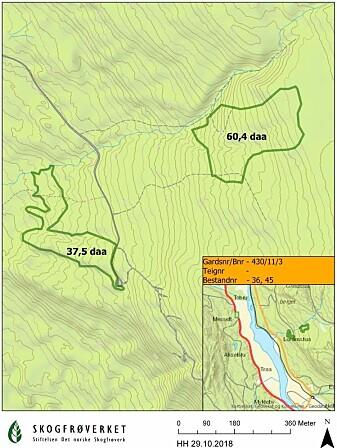 Markeringer av skog i Stor-Elvdal som skal bevares (Kart: Skogfrøverket)