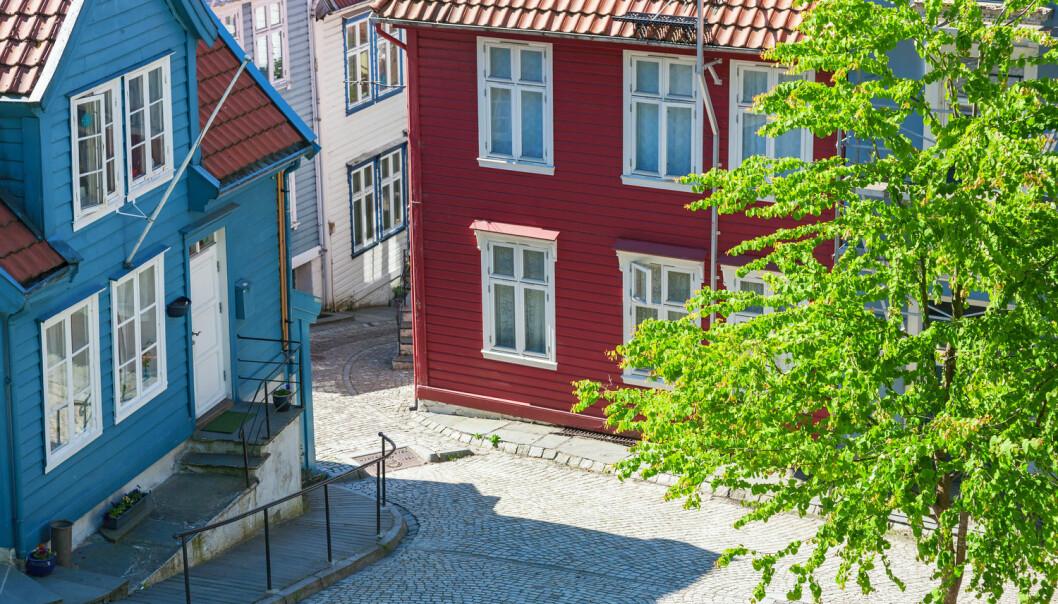 Har noen tenkt på hva dette treet i Bergen gjør med helsa til bergenserne? Fint er det, i hvert fall. (Foto: TTphoto / Shutterstock / NTB scanpix)