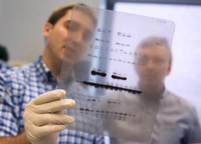 To av forskerne i den amerikanske gruppen som fant at en genetisk mutasjon kan ha gjort oss mennesker langt mer tolerante overfor røyk enn neandertalerne var. (Foto: Patrick Mansell)