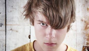 En liten gruppe unge har økt risiko for å bli voldelige og kriminelle hvis de ikke får hjelp