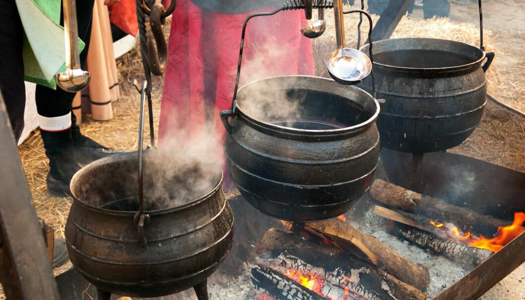 Hvis vikingene kunne dyrke druer, har de – i teorien – kunnet lage sin egen vin. Hittil har man trodd at all vin i vikingtiden var importert. (Foto: Elena Dijour / Shutterstock / NTB scanpix)