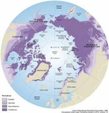 De mørkelilla områdene har permafrost nesten overalt, mens de lysere lillafargene har mer spredt permafrost. (Foto: (Kart fra: Philippe Rekacewicz/International Permafrost Association))