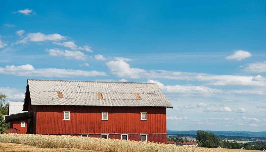 Hvordan blir landbruk påvirket av finanskapital? Det tar forskere for seg i ny bok. (Illustrasjonsfoto: Colourbox)