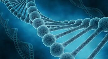 Skal forske på sammenhengen mellom gener og Alzheimer
